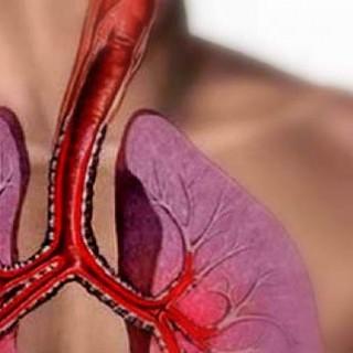 Τα αντιοξειδωτικά μειώνουν τη φλεγμονή στους πνεύμ