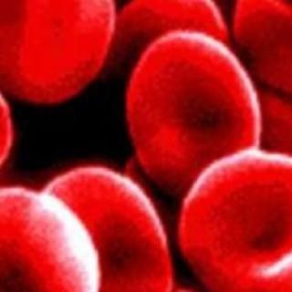 Αναιμία και Βιταμίνη Β12
